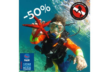Discover Scuba Diving offer