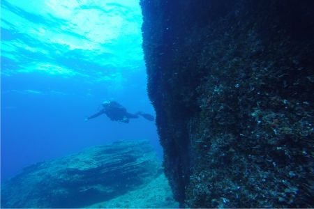 Fun dive at Alatas