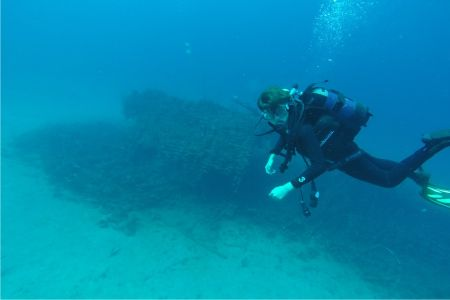 Fun dive at BORA wreck